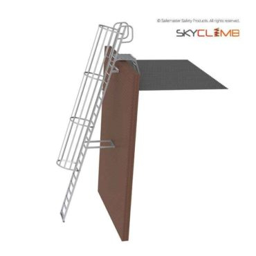 Angled Cage Parapet Access Ladder with Angled Handrails