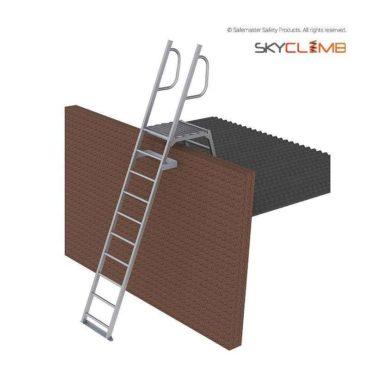 Mini Parapet Ladder with Angled Handrails