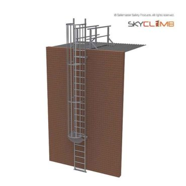 Vertical Cage Access Ladder with 2.0M Access Walkway/Guardrail Kit