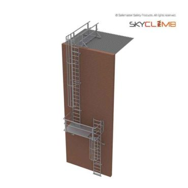 Vertical Cage Access Ladder with 2.0M Access Walkway/Guardrail kit & Change of Direction Platform