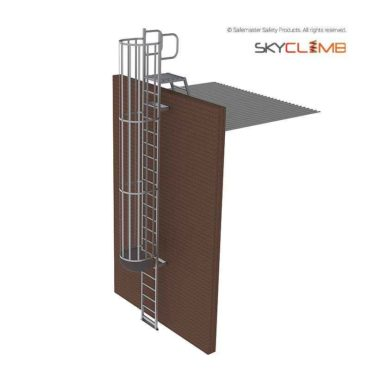 Vertical Cage Parapet Access Ladder with Vertical Handrails