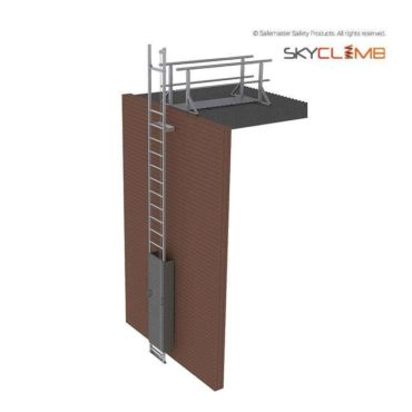 Vertical Line Access Ladder with 2m Walkway/Guardrail Kit